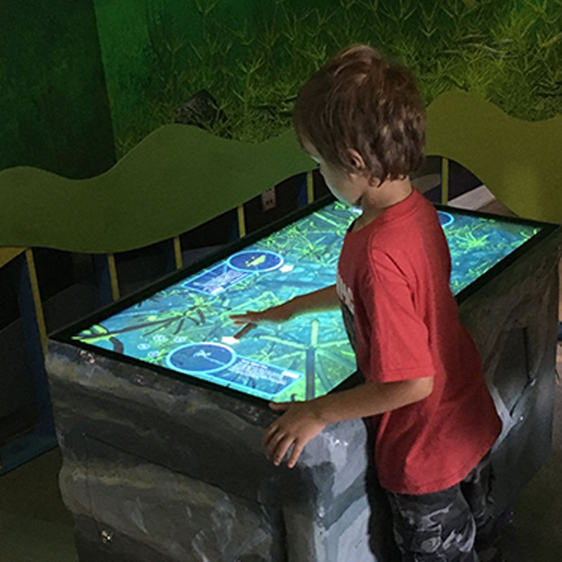 Child playing a touch screen game